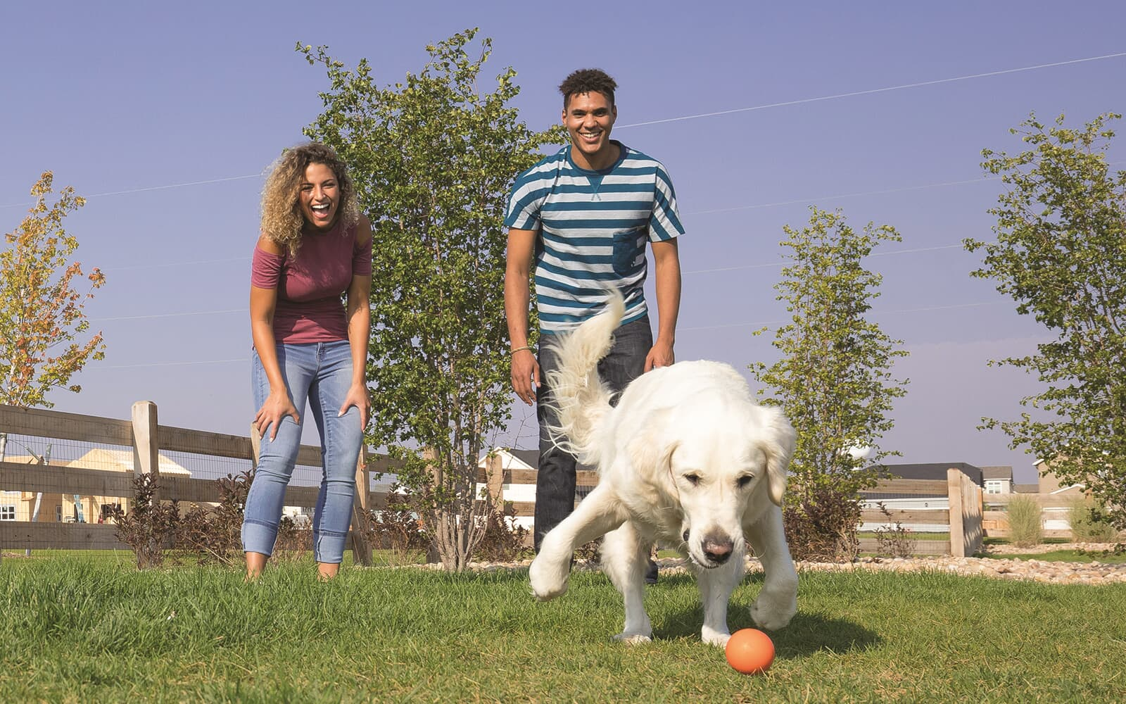 Lifestyle-Crossings-Bark-Couple-Active-Dog-Brighton-Crossings-Denver-Colorado