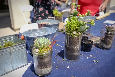 Spring Succulent Style Homeowner Event