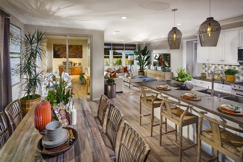 Kitchen and Great Room | Terracina at Rancho Tesoro in San Marcos, CA | Brookfield Residential