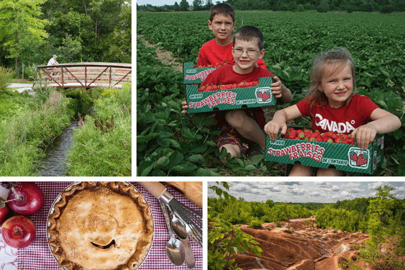 Clockwise from top left: biking along the Caledon Trailway, picking strawberries at Downey's Farm (photo via Downey's Farm), the Cheltenham Badlands (photo via Ontario Trails) and an apple pie from Spirit Tree Estate Cidery's bakery (photo via Spirit Tree Estate Cidery).