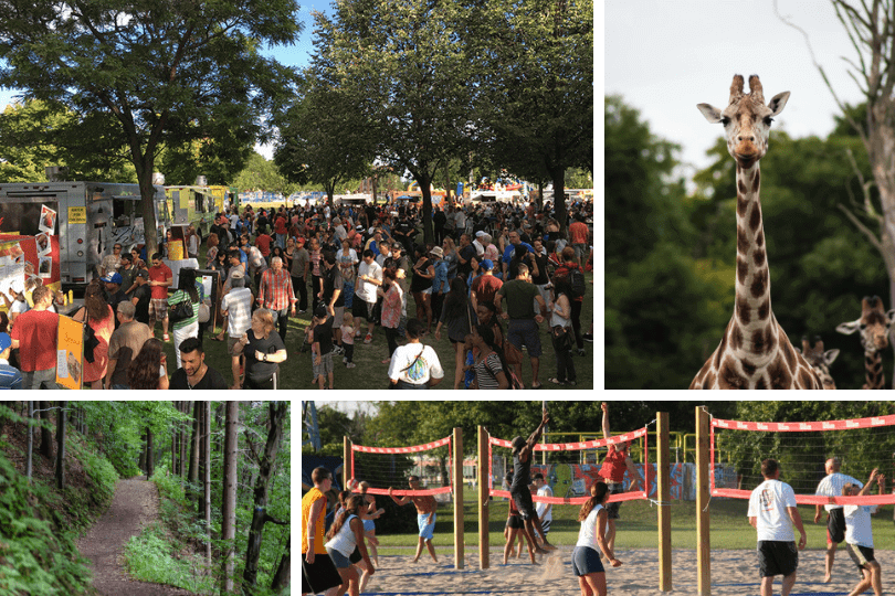 Clockwise from top left: the Pickering Food Truck Festival (photo via Canadian Food Truck Festivals), a giraffe at the Toronto Zoo, beach volleyball on the shores of Lake Ontario (photo via the City of Pickering) and a trail in one of Pickering's many forested areas.