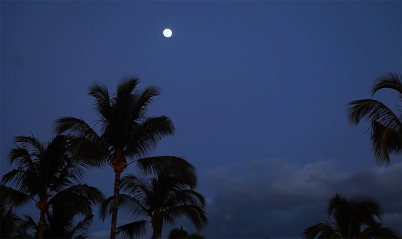 Big Island Events Talk Story Under a Full Moon Brookfield Residential