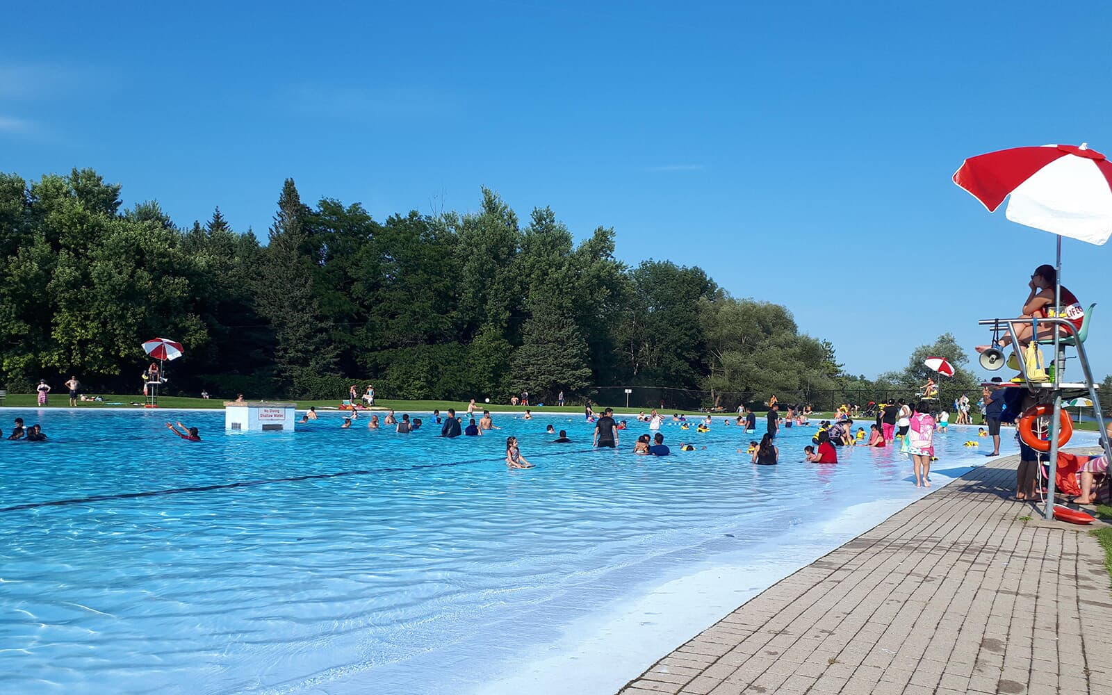 Outdoor Swimming Pool with People in Baxter, Ontario.