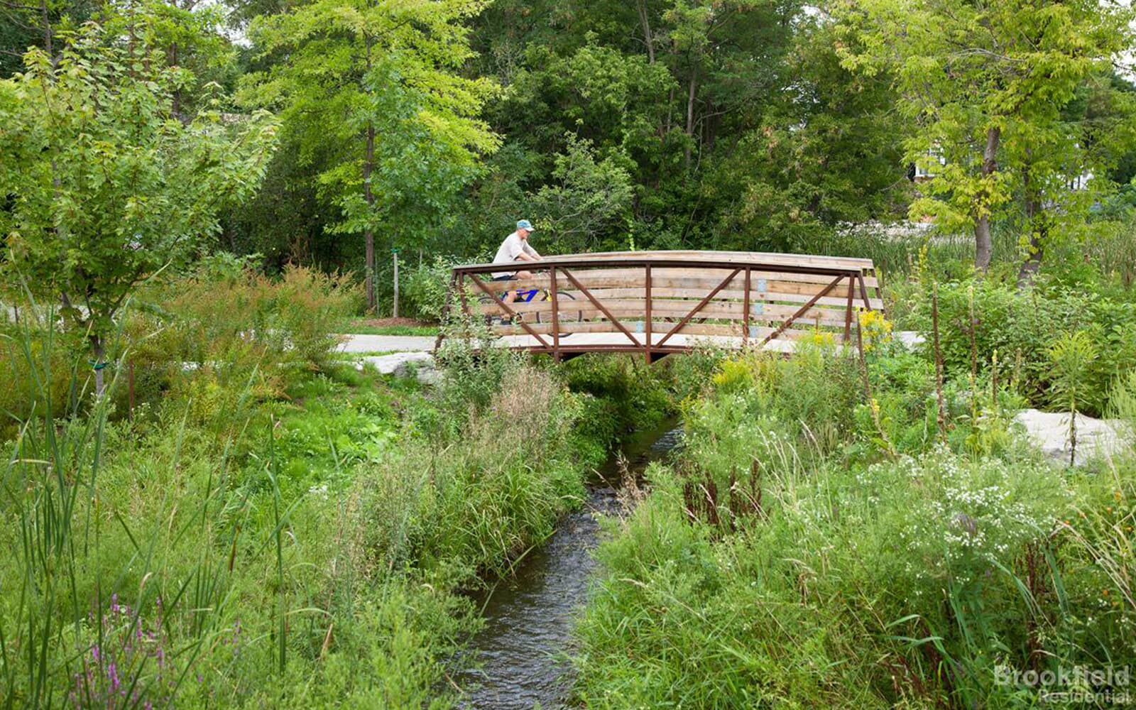 Man Walking Over Small Bridge in the Park in Caledon East, Ontario.