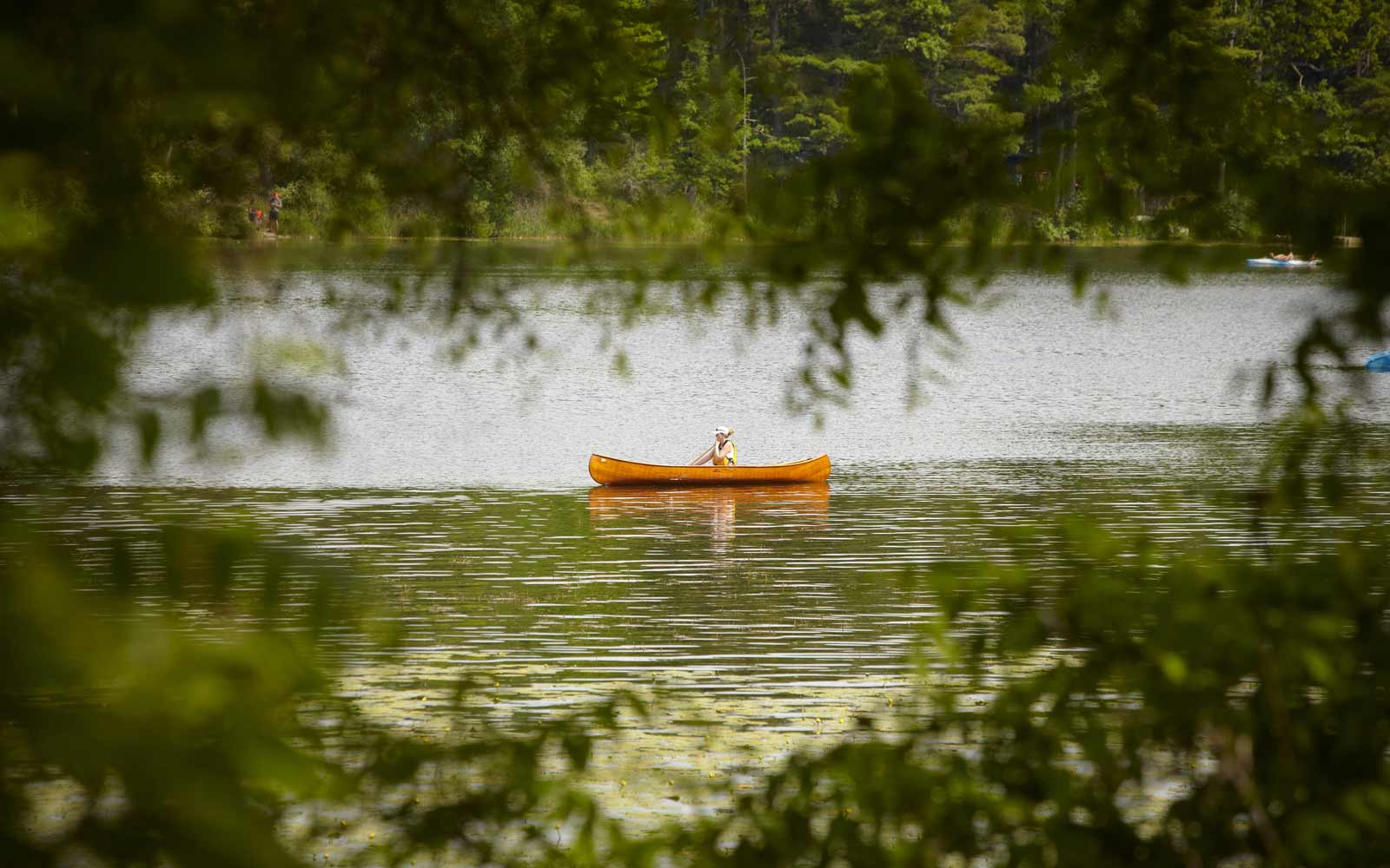 Person in Canoe on Grand River Surrounded by Trees in Paris, ON