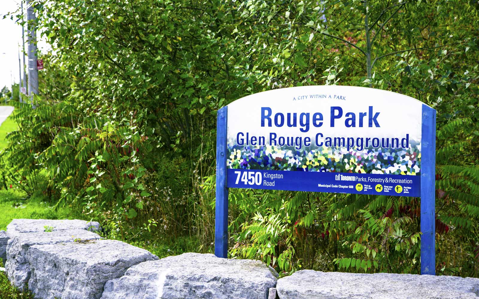 Rouge Park Sign Surrounded by Foliage in Pickering, ON