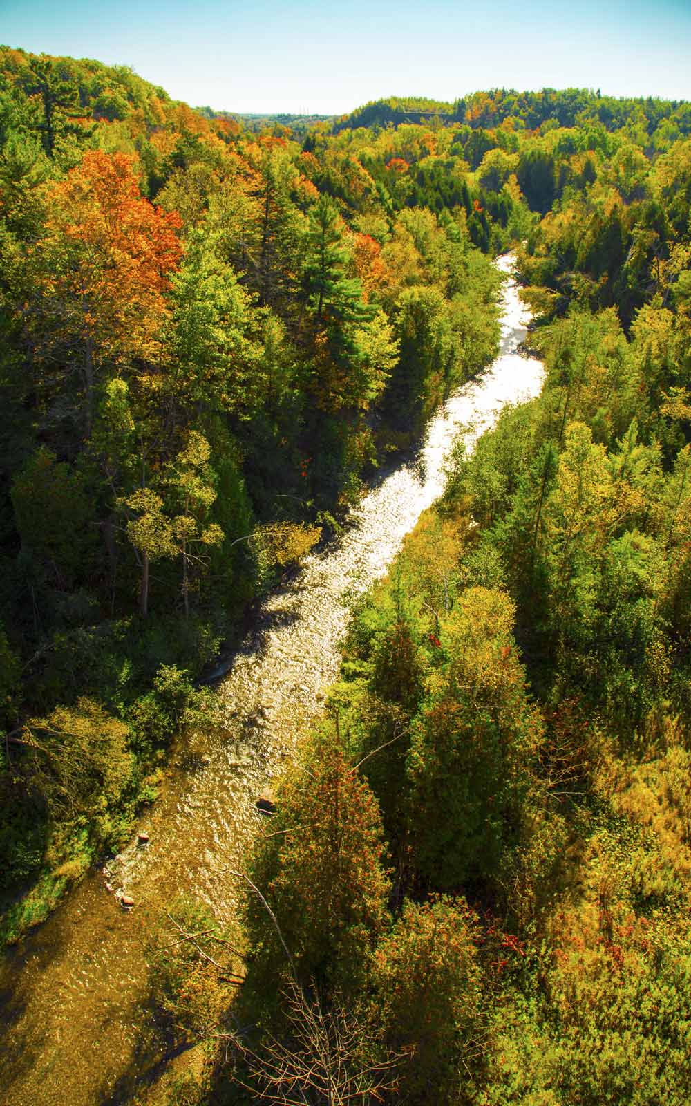 Stream in Forest at Seaton Trail Aerial in Pickering, ON