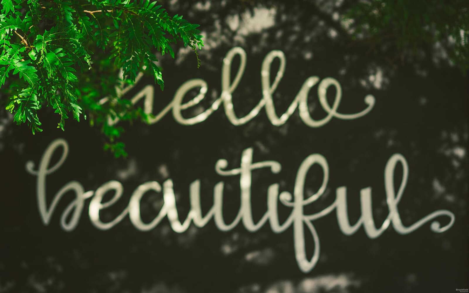 Cursive Hello Beautiful Sign in Whitby, ON