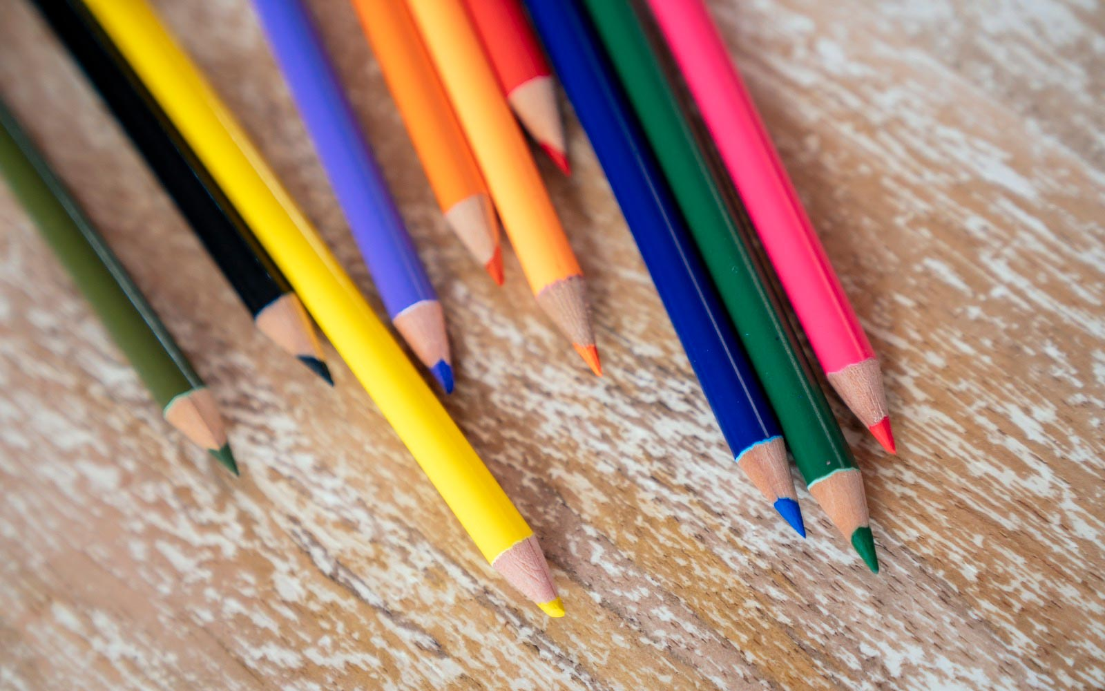 Color pencils | Brookfield Residential Drawn Home