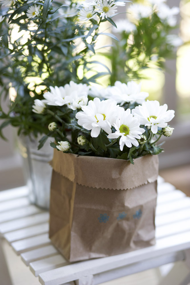 Bouquet of daisies in a stylish paper bag