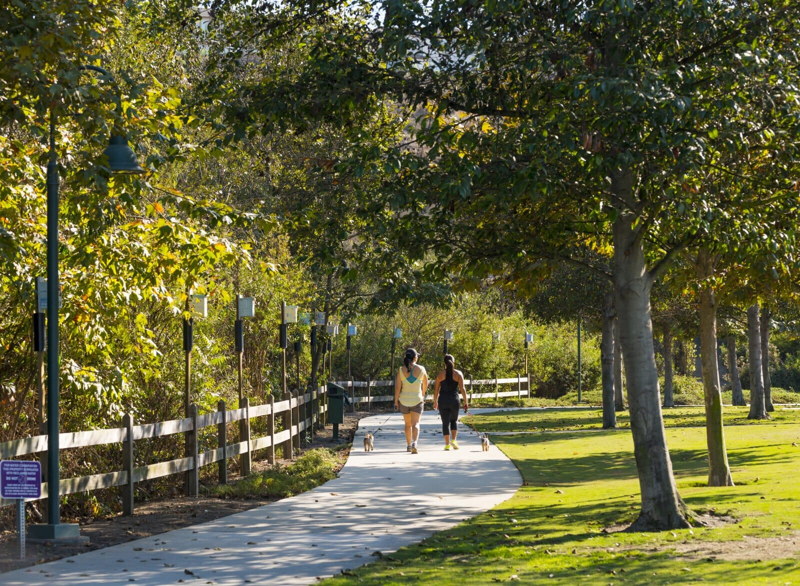 Riparian Corridor at Playa Vista in Los Angeles, CA | Brookfield Residential
